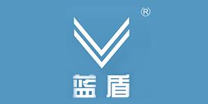 深圳蓝盾之星投资股份有限公司